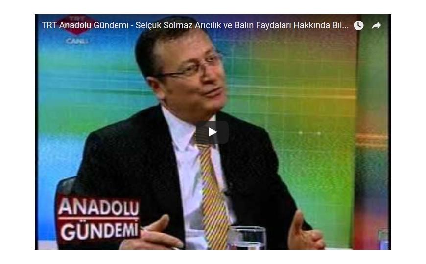 TRT Anadolu Gündemi - Selçuk Solmaz Arıcılık ve Balın Faydaları Hakkında Bilgi Veriyor